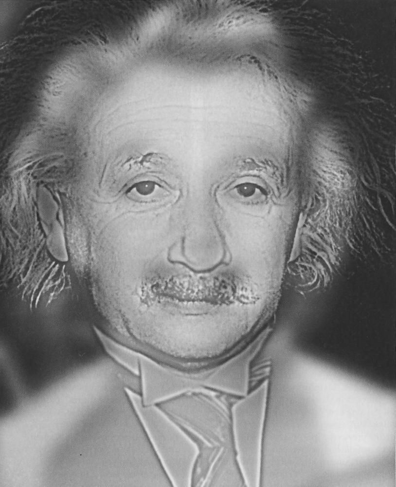 Viral Science: Einstein or Monroe Optical Illusion